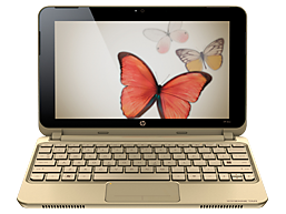 Ordinateur HP Mini 210-1099EF Vivienne Tam Edition